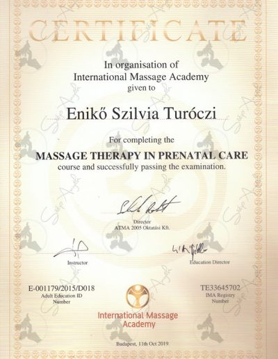 Massage Therapy in prenatal care